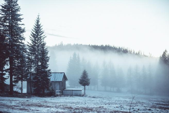 fog-1208290_1280